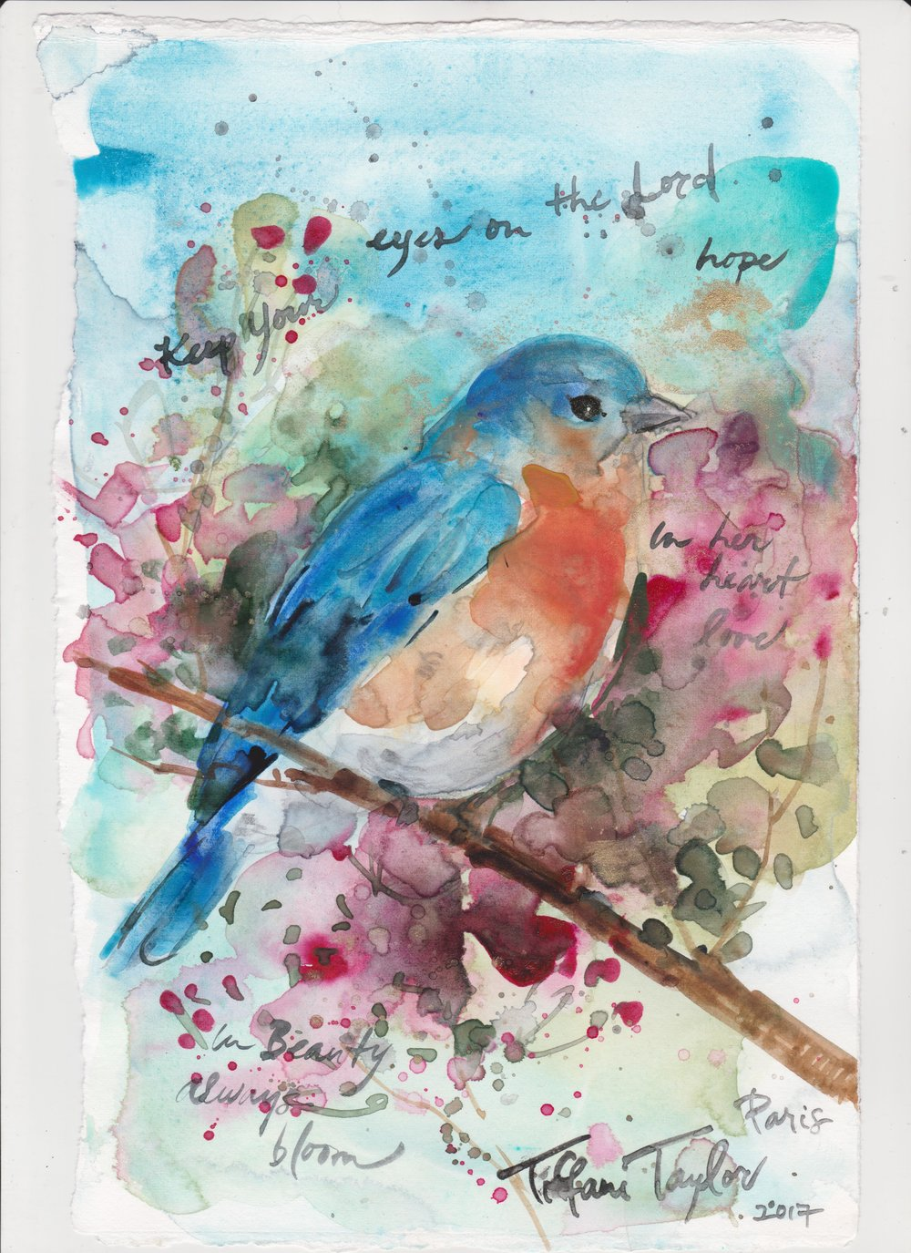 Bluebird Keep your eyes on the Lord