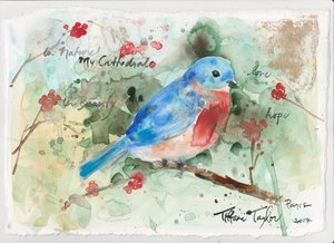 Bluebird in Nature My Cathedral 8x11