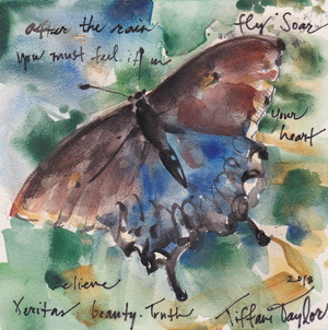 After the Rain: Fly, Soar, Believe 6x6