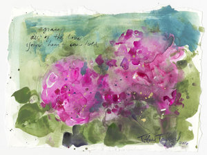 Hydrangeas: Grace, Magic, Love 11.5x7.5