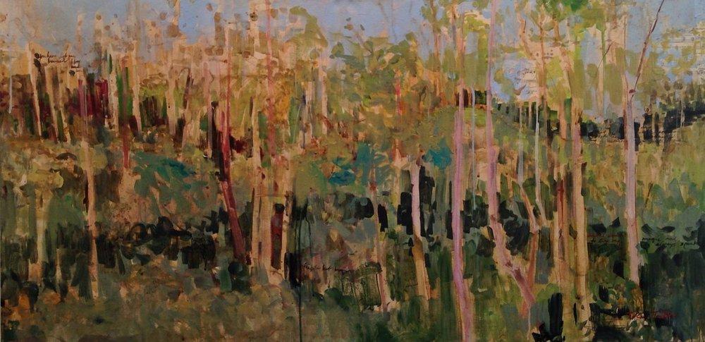 Florence to Cortona: Grove of Trees, Peace...