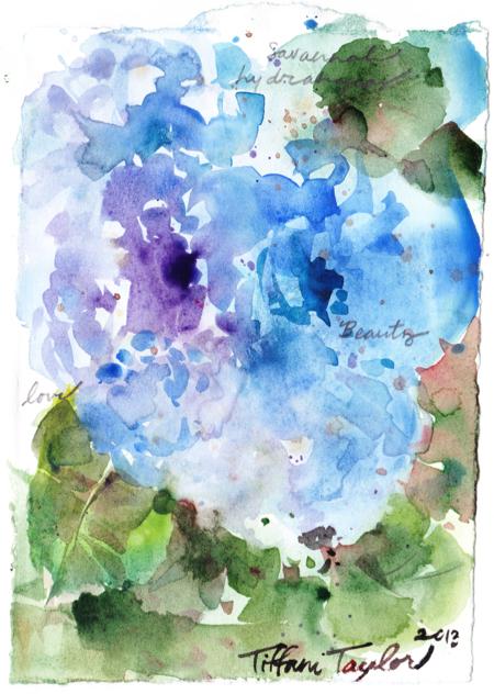 Savannah Hydrangeas: Love, Beauty...