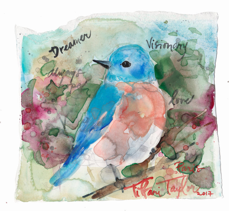Bluebird Dreamer, Always