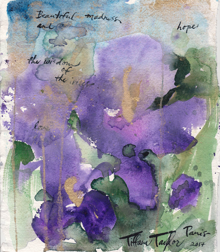 Wisdom of the Irises: Beautiful Madness