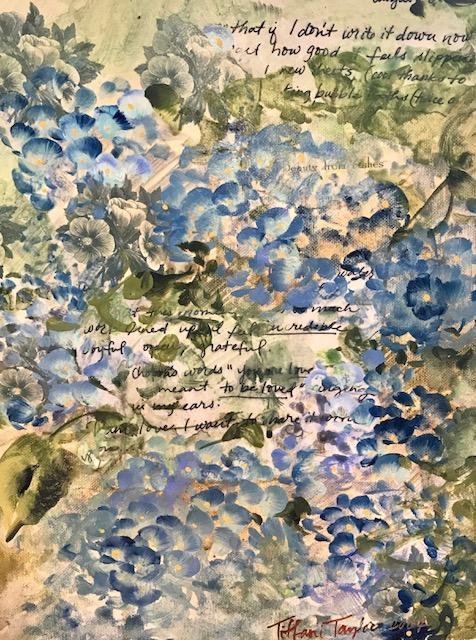 Savannah Hydrangeas
