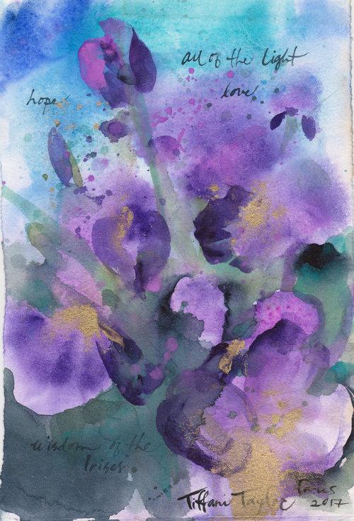 Wisdom of the Irises: All of the Light, Love...