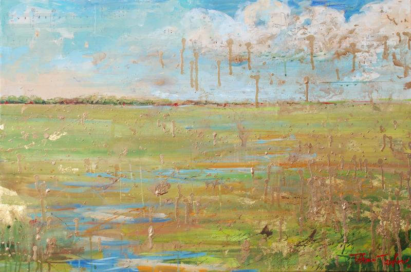 Savannah Marsh at the Golden Hour
