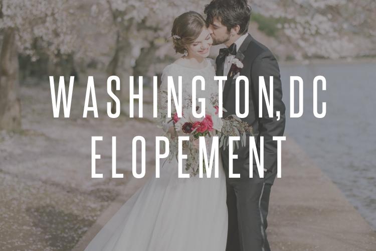 Washington, DC wedding photographer, cherry blossom elopement photographer