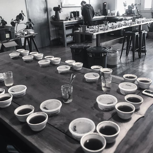 Thanks to @redfoxcoffeemerchants for hosting this cupping for me! We bought some beautiful fresh off the boat Colombian & Peruvian coffees! Special thanks to @jaminsky for helping me make some tough choices 👍🏼🤘🏼