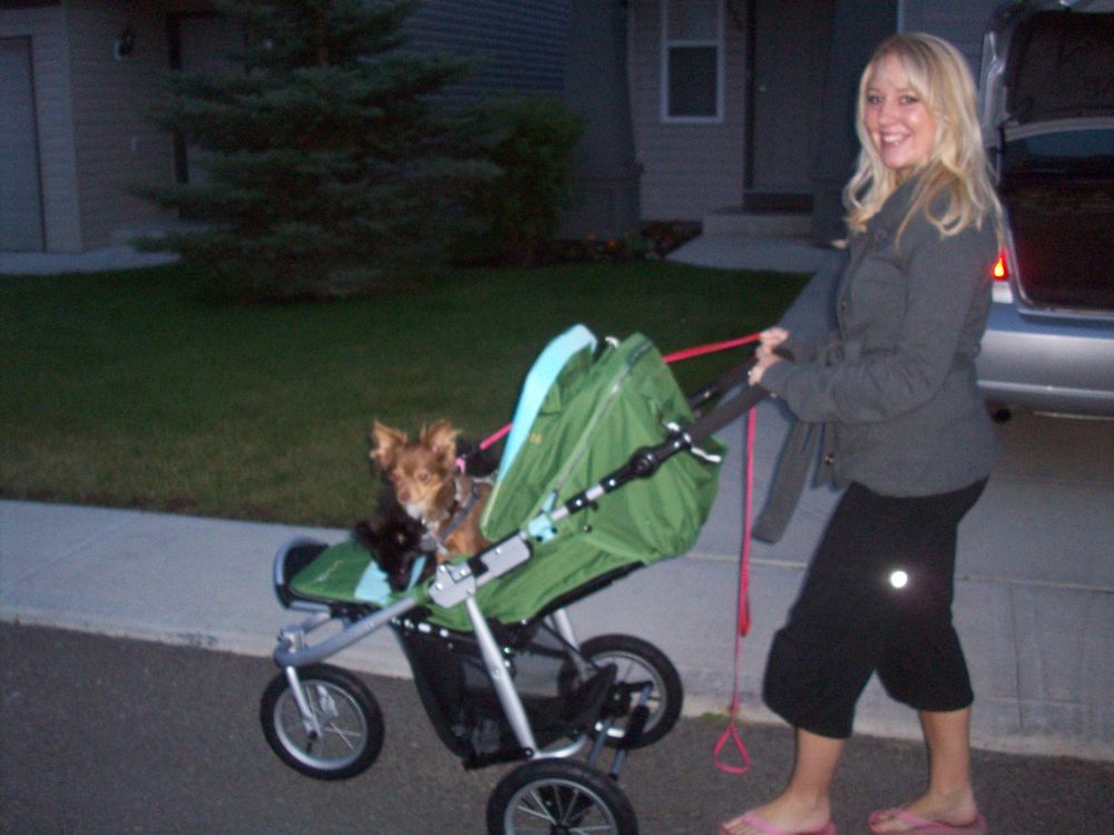I was so excited when we bought our stroller, just wanted so badly a baby to put in it!
