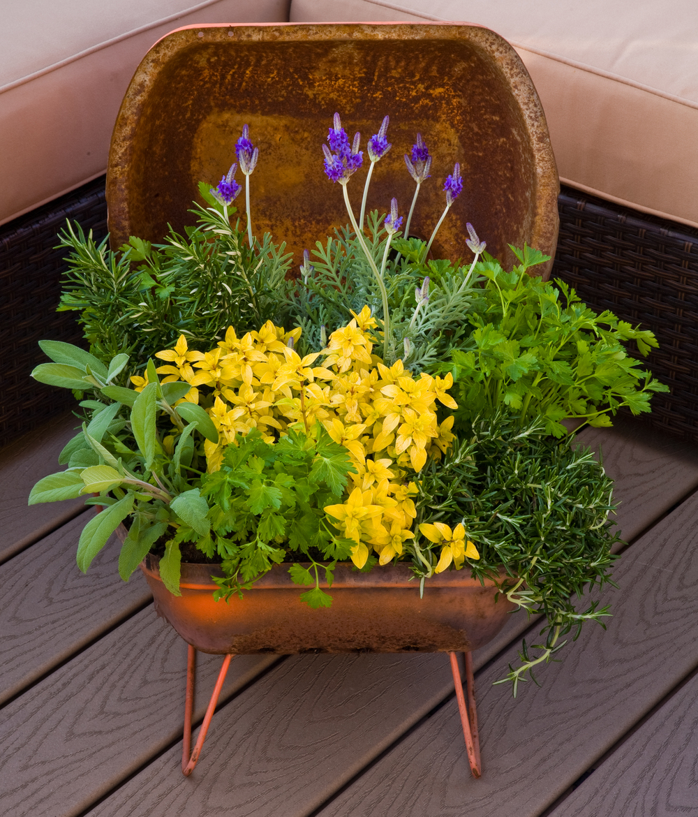 portable-grill-container-herb-gardening.jpg