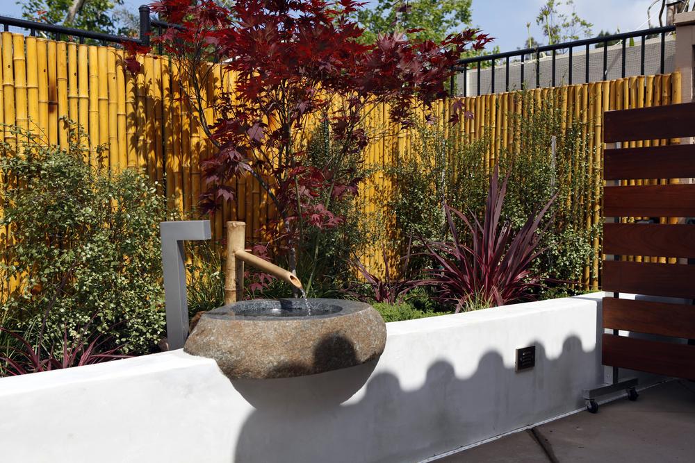 Singing gardens san diego 39 s landscape and garden designer for Japanese water garden plants