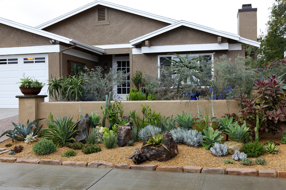 Landscaping front yard landscaping ideas succulents for Front garden ideas