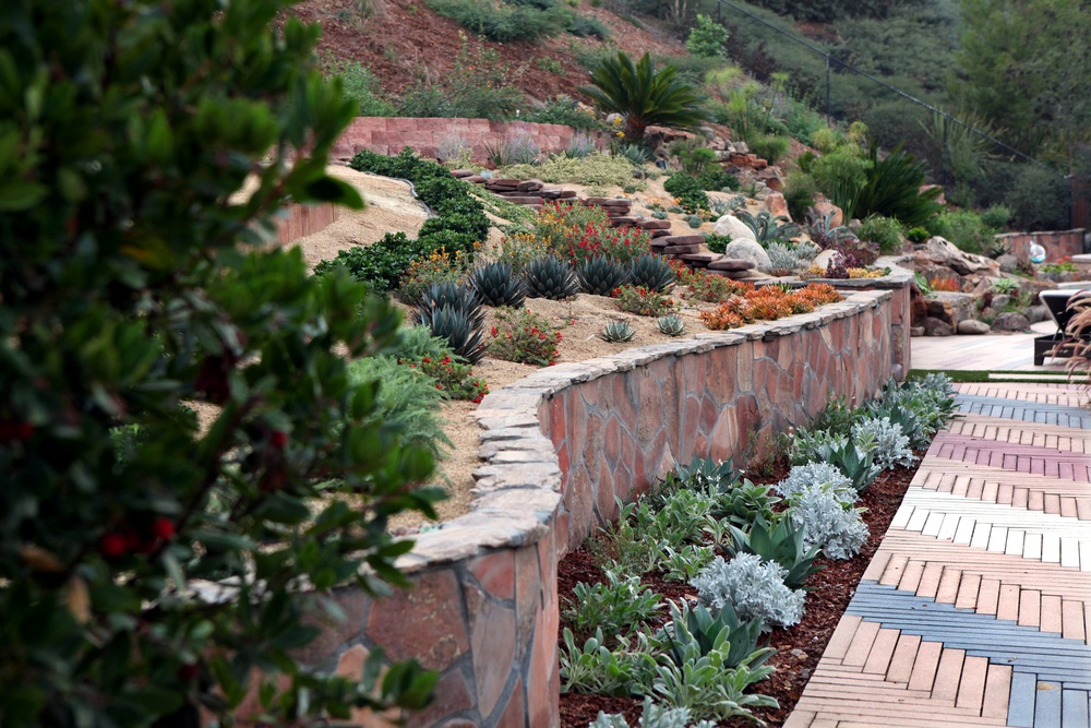 Singing gardens blog steep slope landscaping for Hillside landscaping plants