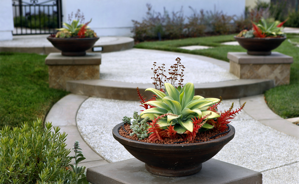 Singing gardens san diego 39 s landscape and garden designer hopes to revitalize your outdoor - Small space container gardens design ...