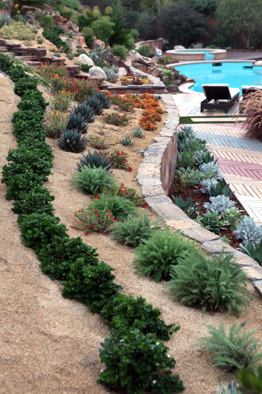 Terraced Backyard Slope :  Garden  Garden Designer  Xeriscaping Landscape  Plants & Ideas San