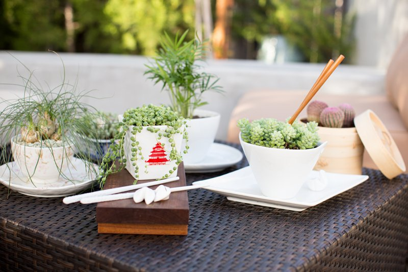 dish-gardening-ideas-Chinese-feast.jpg