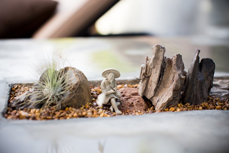 miniature-rock-table-top-gardening-idea.jpg