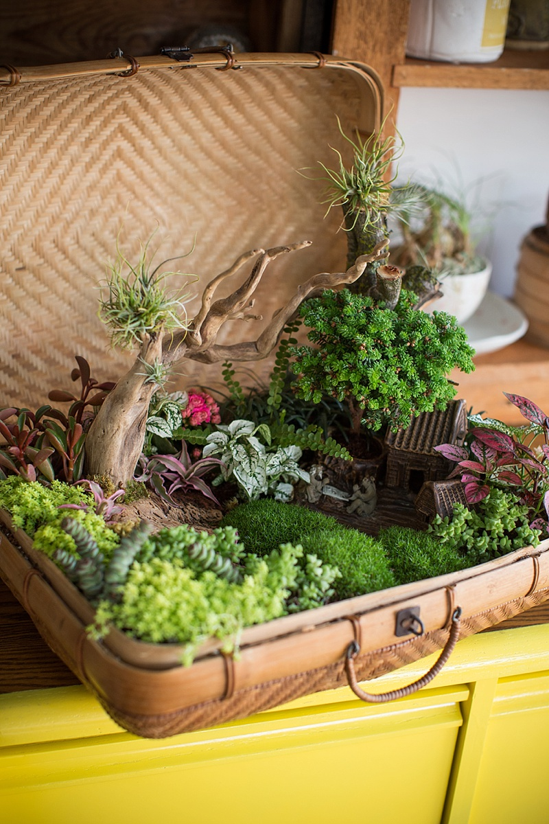 miniature-zen-garden-in-a-basket.jpg