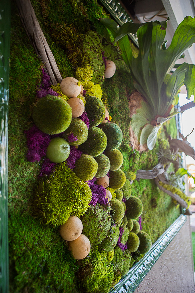 3D moss vertical garden art patio outdoor room.jpg