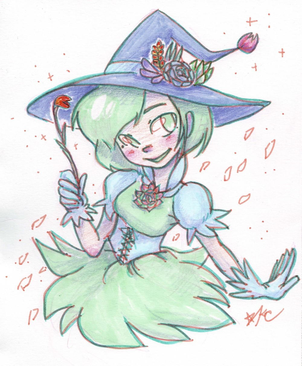 succulent witch copy.jpg