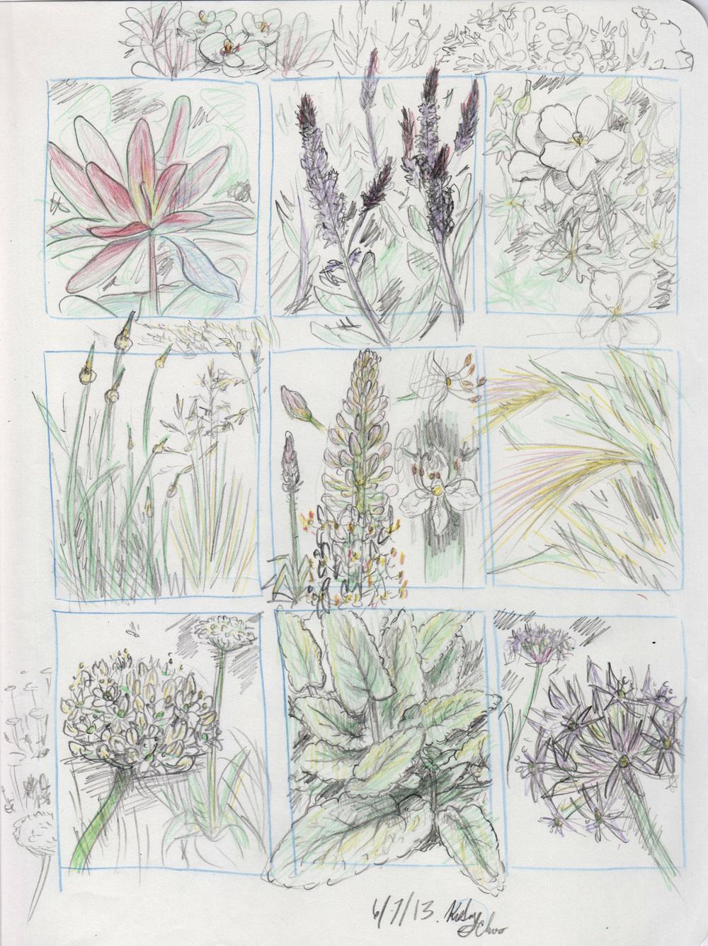 flowers+2.jpg