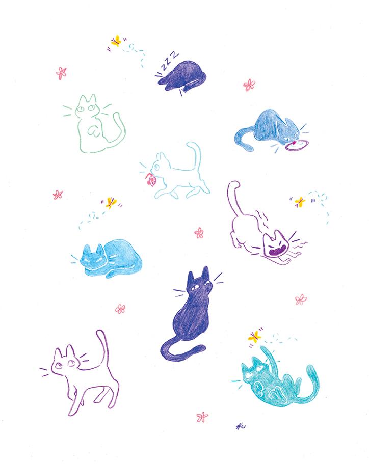 cats copy.jpg