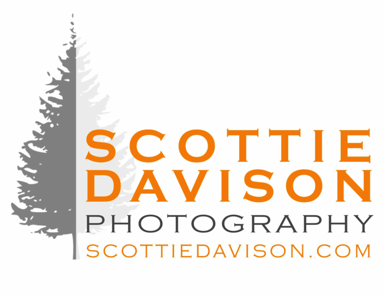 Scottie Davison Photography