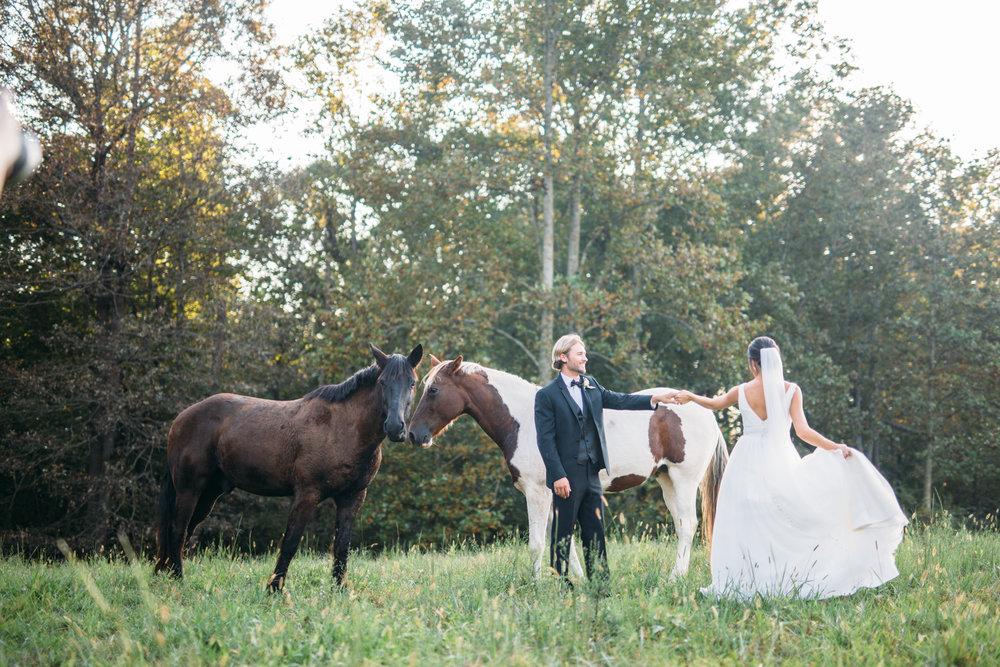 A & C Wedding-581.jpg
