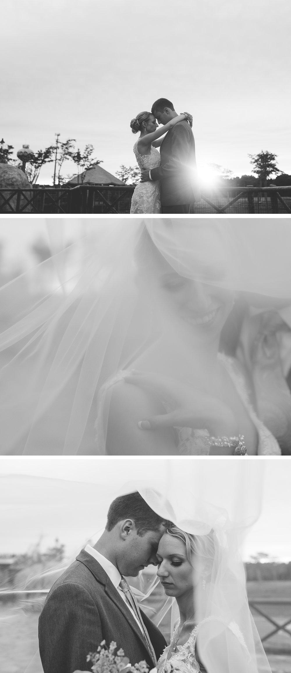 Columbus Wedding Photographers, Brett Loves Elle, Columbus Bride and Groom