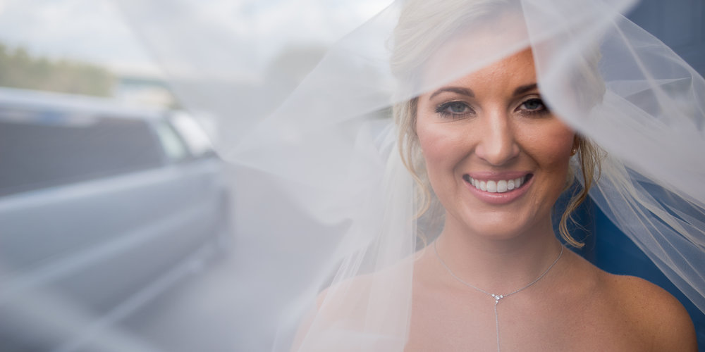 Bridal Veil Portrait By Brett Loves Elle Photography, Columbus Wedding Photographers. Dock580