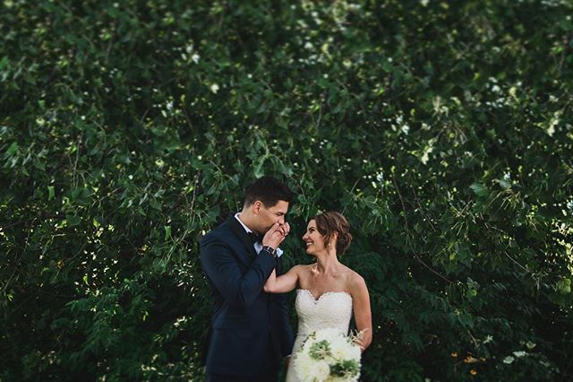 How sweet love is //// • • • • • • •  #brettlovesellephotography #ohwowyes #livethelittlethings #belovedstories #loveandwildhearts #photobugcommunity #wildlove #wanderingphotographers #radstorytellers #firstandlasts #calledtobecreative #thatsdarling #pursuepretty #wanderingweddings #thedailywedding #theknot #weddingwire #realweddings #darlingweekend #chasinglight #loveintentionally #finditliveit #flashesofdelight #peoplescreatives #columbusweddingphotographer #outdoorwedding #brideandgroom #photographylover #couplesofinstagram