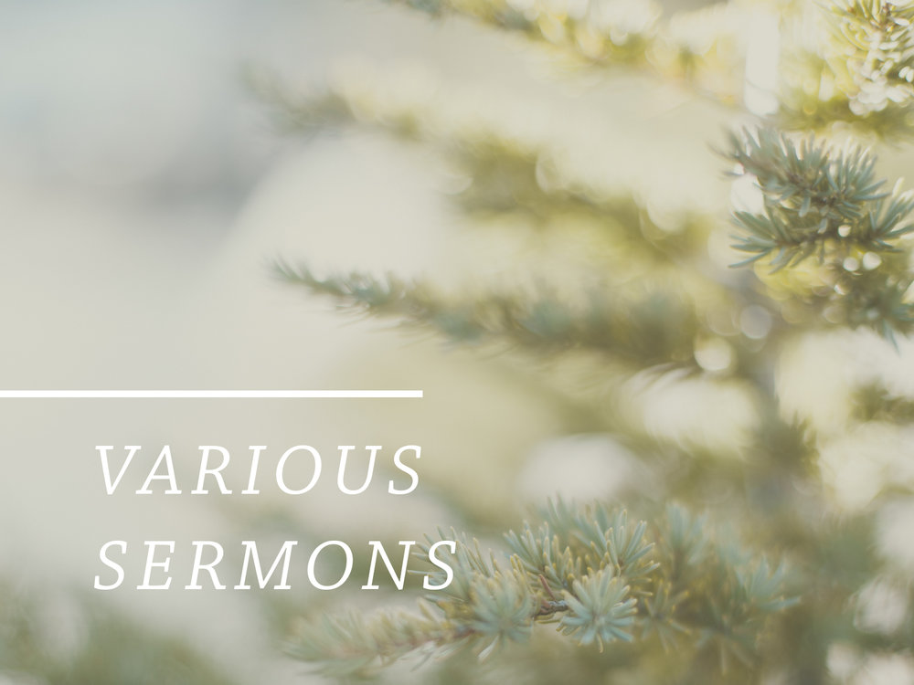 Various Sermons.jpg
