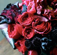 Homepage-'weddings-&-arrangements'.jpg