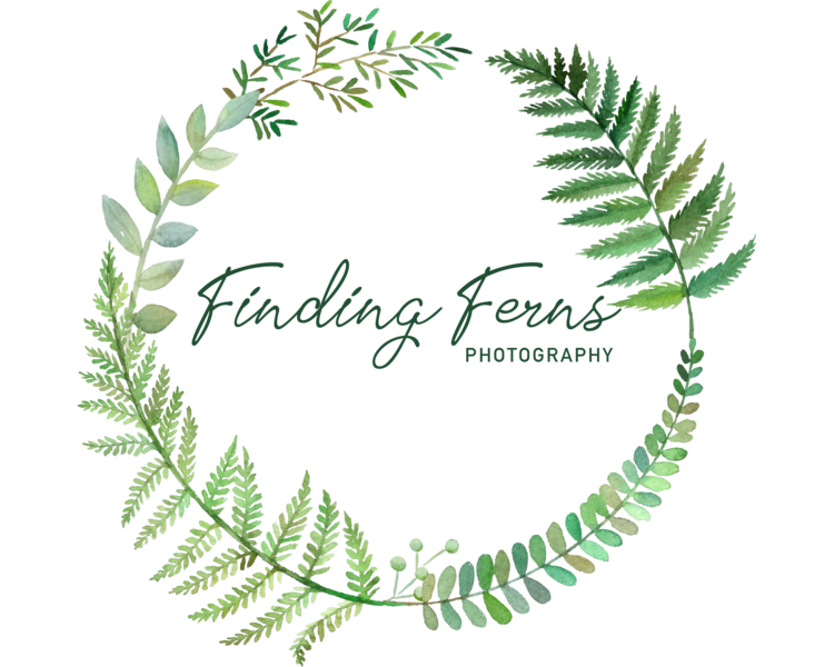 Finding Ferns