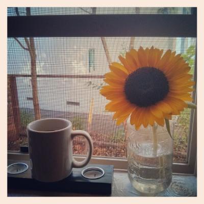 Lemon Water + Sunflower