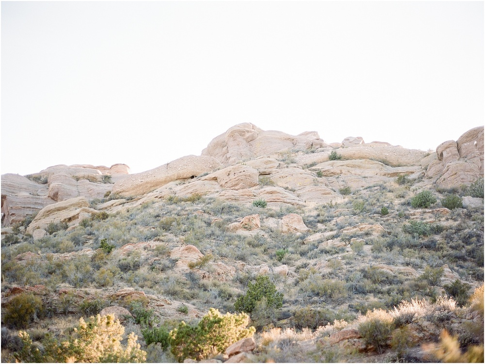 Vasquez-rocks-engagement-session-50.jpg