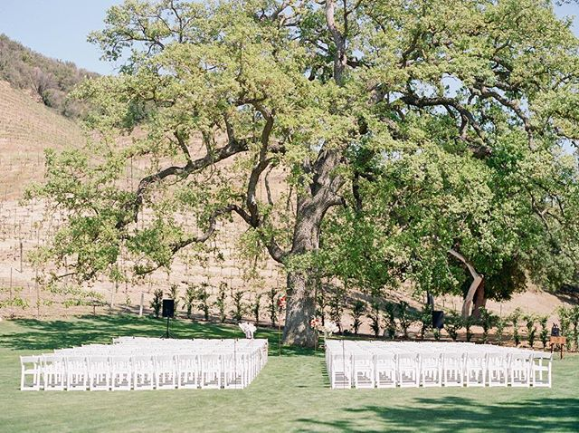 @triunfocreek was the perfect backdrop for this Spring wedding ceremony! ⠀ ⠀ ⠀ ⠀ ⠀ . . . . . . . . #springwedding #triunfocreekvineyards #triunfocreek #triunfocreekwedding #ceremonydecor #contax645 #filmweddingphotographer #weddingceremonyideas #theknot #weddingwire #bridetobe2019 #bridetobe2020 #californiaweddings #stylemeprettyweddings #california #agourahills #vinyardwedding #californiaweddingvenue #springceremony #agourahillsweddingphotographer #agourahillswedding #springbride
