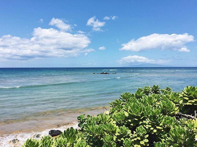 Aloha, Sunday. 🌺