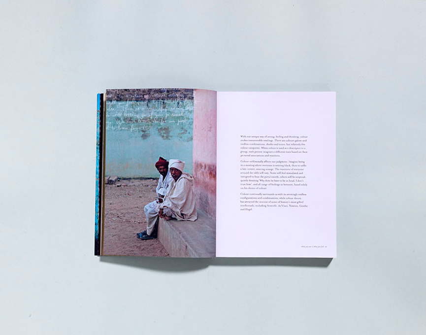 PUBLISHED : Colour by Victoria Alexander + designed by Monique Lovering + Murdoch Books