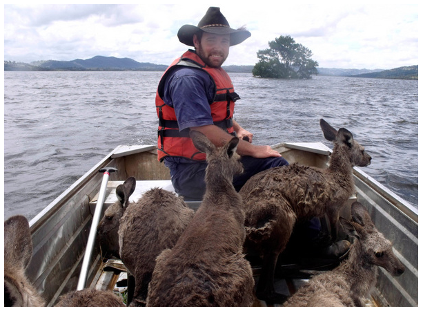 A local Queenslander saving a few other locals from the tragic floods that have caused deaths and destruction to the people in north east Australia.