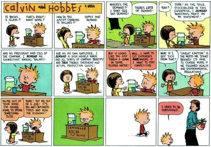 Calvin and Hobbes  summing up Occupy Wall Street — decades ago.