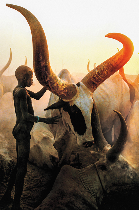 Dinka Boy with Long Horned Bull, South Sudan, photographed by Carol Beckwith/Angela Fisher