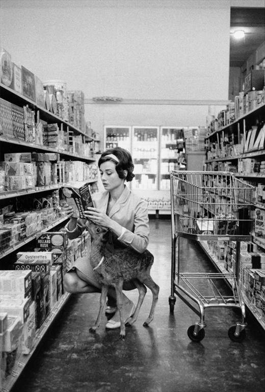 "Audrey and her pet deer.    ""When the British actress was making her 1959 film Green Mansions,  directed by  then-husband Mel Ferrer, the animal trainer on the set  suggested that  she take her on-screen sidekick, a baby deer, home with  her so that he  would learn to follow her. Audrey's inner calmness was  perfect, and the deer thought she was her mother. Nicknamed 'Ip', the  deer would cuddle Audrey and accompany her to the supermarket in  Beverley Hills. Hepburn's dog, a Yorkshire Terrier called Mr Famous  (sadly, later killed in car accident) was very jealous of the new  addition to the family. The fawn slept in a custom-made bathtub."" via  Another"