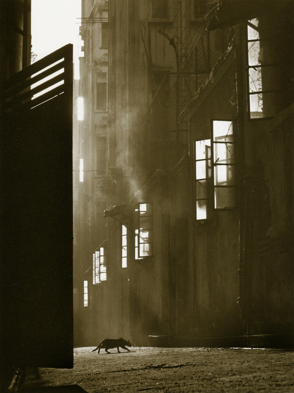 Love a piece of Fan Ho:      Fan Ho   The Search,  1960. From  Hong Kong Yesterday.