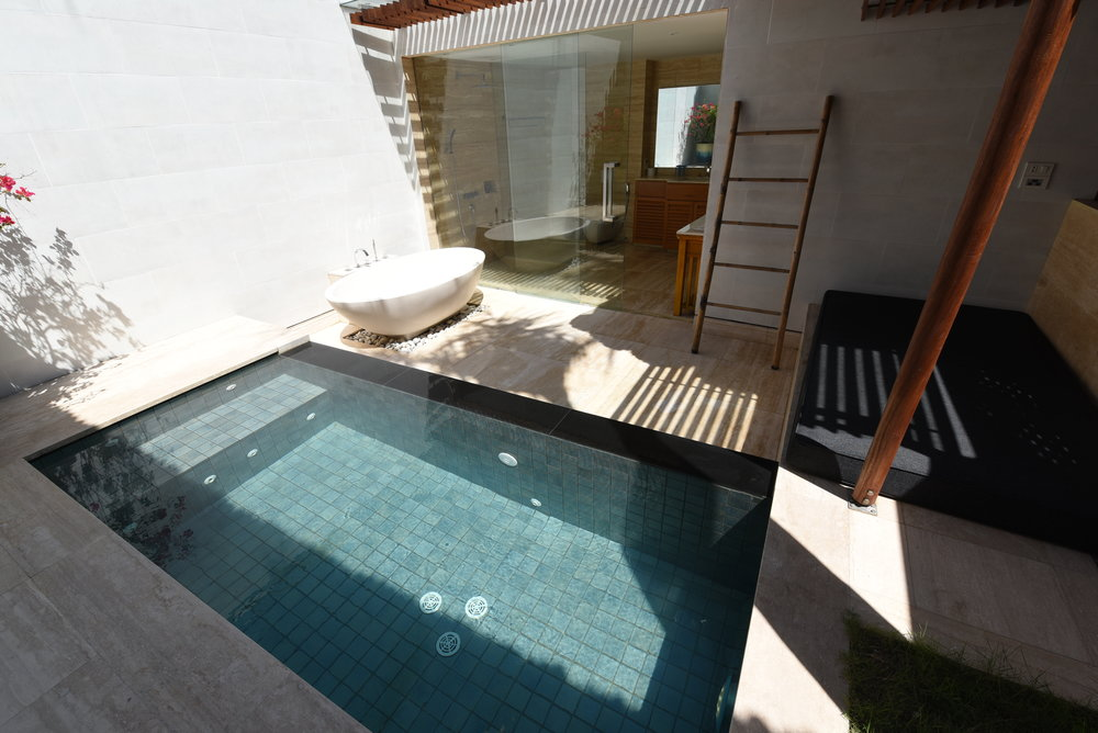 GARDEN VIEW PRIVATE COTTAGE PLUNGE POOL - JACUZZI