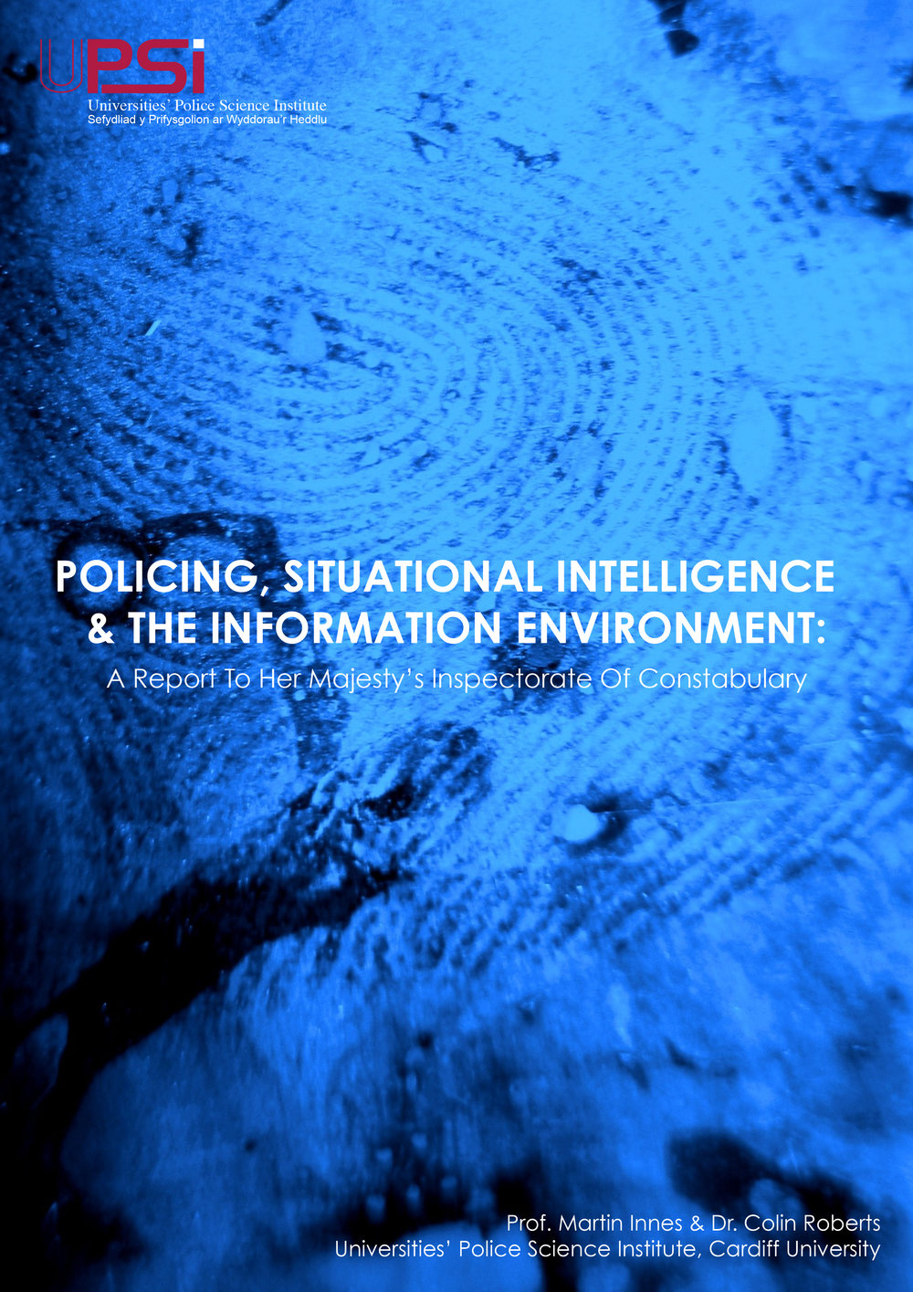 Policing, Situational Intelligence & The information Environment: A Report to HMIC
