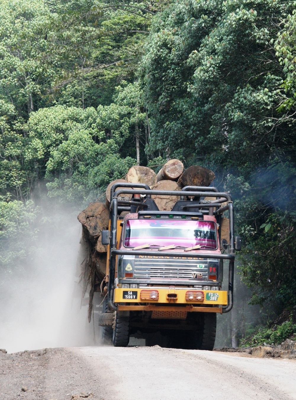 Roads can bring big environmental problems--a logging truck in Borneo (photo by Rhett Butler).