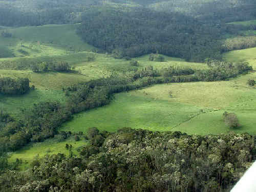 Landscape linkages--a conservation corridor in north Queensland, Australia.