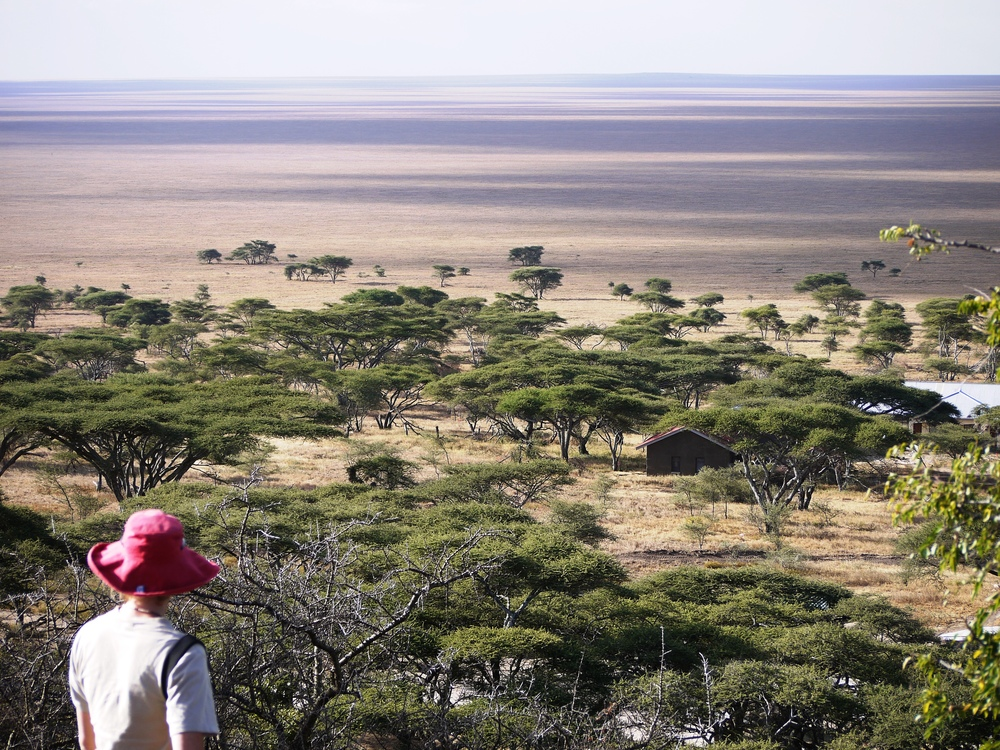 Trouble on the horizon... even the iconic Serengeti could be threatened by mining (photo by William Laurance)